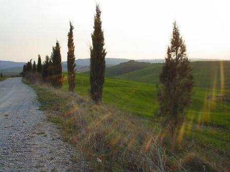 """""""Белые дороги"""" Тосканы"""