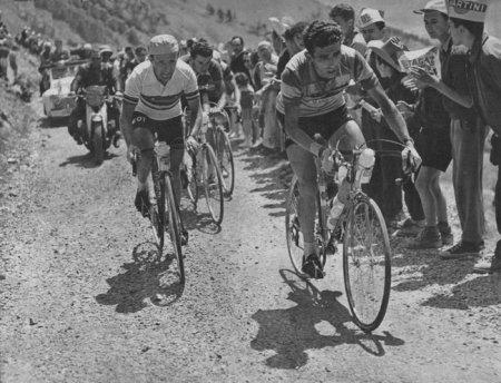 Страницы истории велоспорта: Тур де Франс - 1956