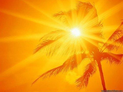 Палящее солнце Севильи