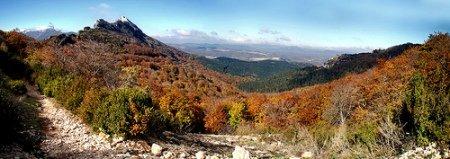 Monte leon