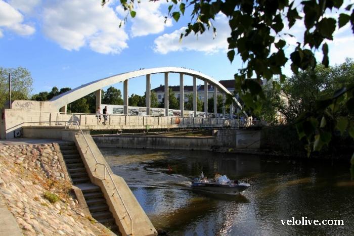 Тарту: чемпионат европейский, уровень мировой