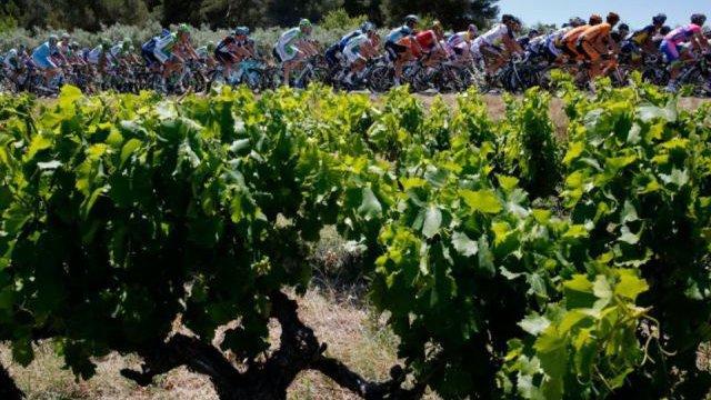 Французские виноделы угрожают заблокировать 11-й этап Тур де Франс-2016