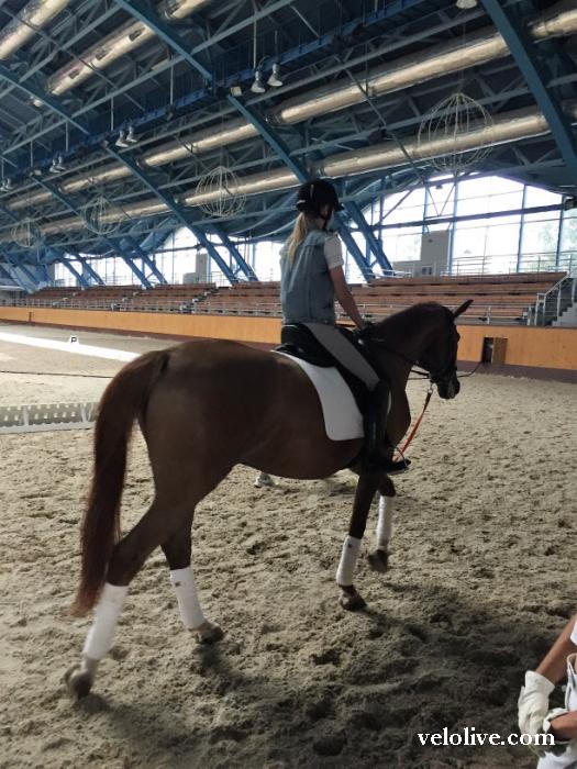 «Олимпийская галерея»: Алёна Омелюсик, велоспорт-шоссе, сборная Беларуси