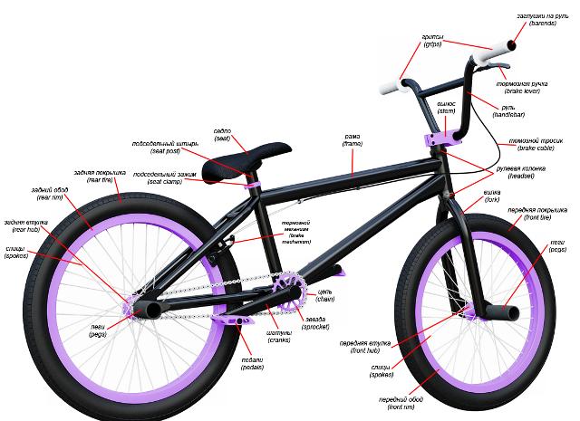 4 Критерия: как правильно выбрать BMX велосипед