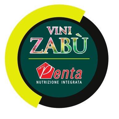 Команда Vini Zabu не стартует на Джиро д'Италия-2021
