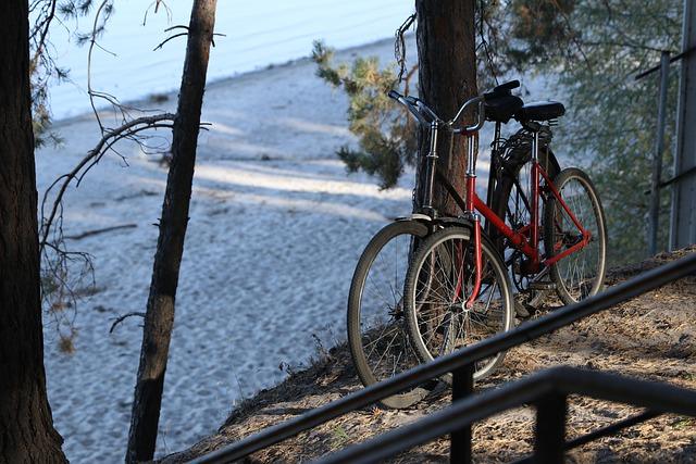 Основные типы велосипедов: какой лучше выбрать